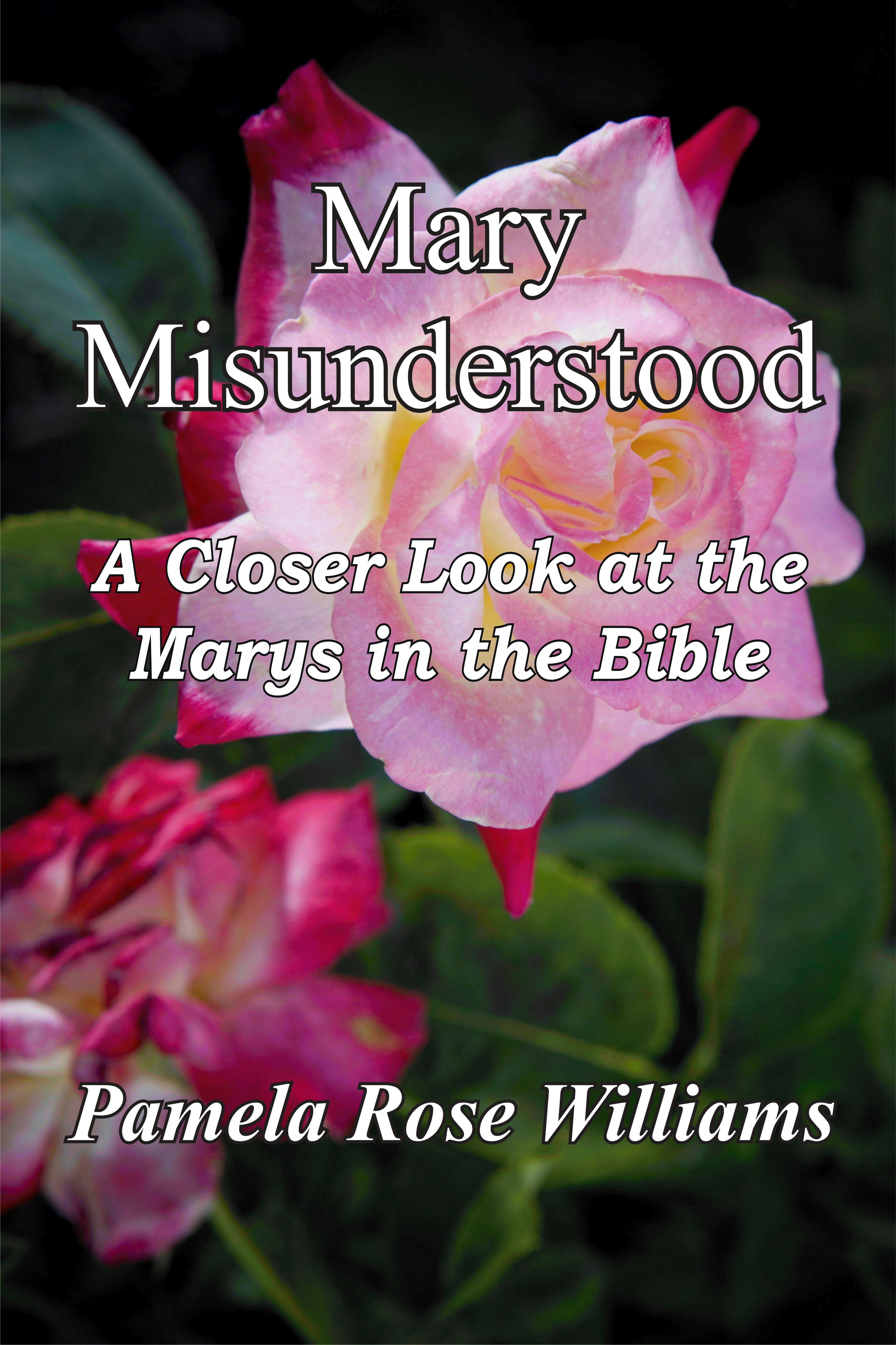 Mary Misunderstood: A Closer Look at the Marys in the Bible by Pamela Rose Williams